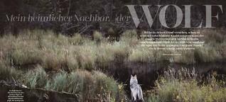 DOGS | Über Wölfe & Hunde