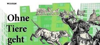 Human Animal Studies - ein neues Forschungsfeld