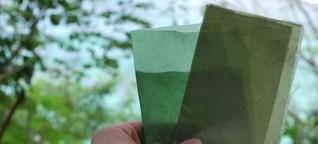 Evoware: Essbare Verpackung aus Algen