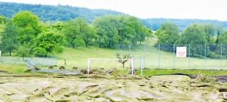 Vier Wochen nach der großen Flut im Saarland