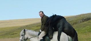 """Kritik zu """"Von Menschen und Pferden"""" - Willkommen auf Island"""