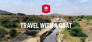 INSIGHT - Travel with a Goat