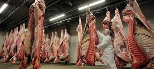 Fleischesser: Wie haltet ihr das Töten aus?