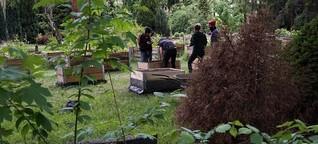 Umgenutzte Friedhöfe - Aus Gräbern werden Grundstücke