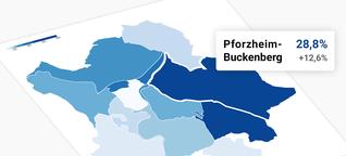 Wo die AfD in Pforzheim am stärksten ist