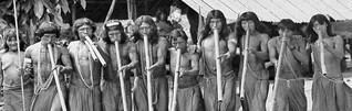 Hilferuf der Waiãpi aus Brasilien