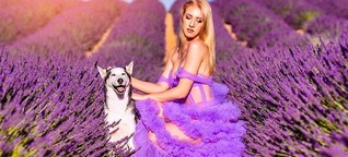 Spannungsfeld überm Blütenmeer: Lavendel-Bauern in der Provence klagen über Influencer