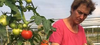 Saatgut-Züchterin Christina Henatsch
