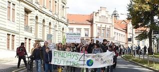 Von 200 bis 25.000 Teilnehmern - Klimastreiks in ganz Sachsen | MDR.DE