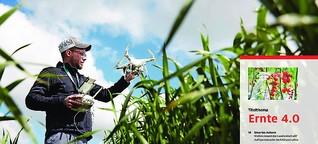 Wenn die digitale Farm mitdenkt...