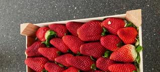 """Warum man """"true fruits"""" nicht einfach ignorieren darf"""
