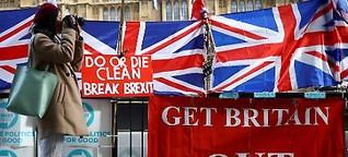 Warum diese Deutschen für den Brexit sind