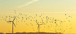 Wind ohne Kraft
