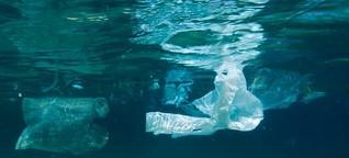 Kampf dem Müll im Meer | DW | 13.04.2013