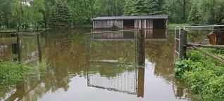 Dammbruch im Hochwasserschutz