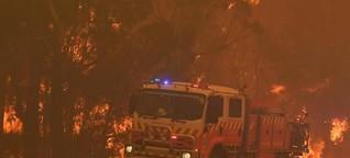 Notstand über Weihnachten: Buschbrände zerstören Millionen Hektar Land
