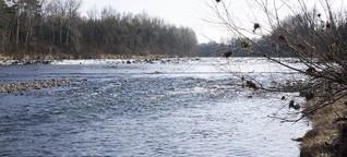Rette unser Wasser! NGOs fürchten um Wasserrahmenrichtlinie