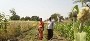 Gegen die Dürre in Indien - Pfllanzenmix statt Sojafelder