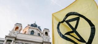 Die achtsamen Radikalen - DATUM