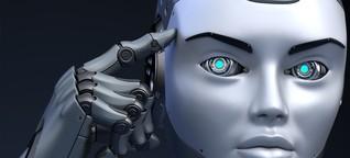 Künstliche Intelligenz: Wie lernen eigentlich Maschinen?