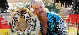 Tiger King in Deutschland: So einfach ist es, hier Raubkatzen zu halten