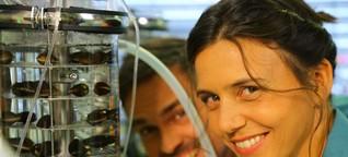 Xenius: Nanopartikel - Superteilchen oder unsichtbare Gefahr? | ARTE