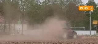 Ernte-Einbußen: Wie die Dürre Landwirte bedroht