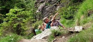Alpiner Naturschutz : Allgäuer Ranger im Einsatz / Tagesschau, Mittagsmagazin, gut zu wissen, Abendschau | ARD, BR