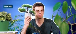 Wie der Kapitalismus die Umwelt zerstört (Drehbuch: Marten Hahn)