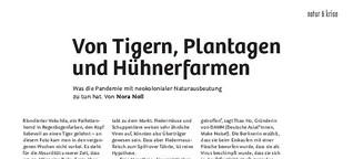 Von Tigern, Plantagen und Hühnerfarmen