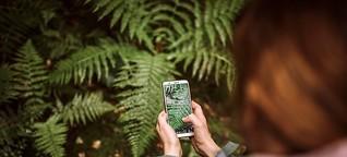 Natur-Apps für den Artenschutz