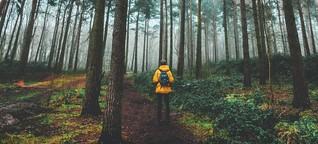Ein großes grünes Trostpflaster - wieso ich ständig im Wald bin