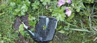 Niederlande: Der Plastik-Recycler Dave Hakkens | Europamagazin