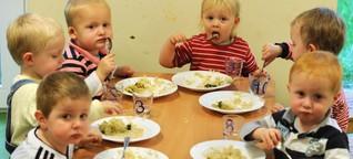 Interesse an Bio-Essen in Kitas und Schulen wächst