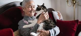 Senioren in Deutschland: Wie der Staat seine Ärmsten triezt - DER SPIEGEL - Politik
