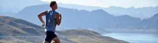 Das verlorene Knie - anstatt einer knöchernen Führung nur Bänder, Muskeln und Sehnen?