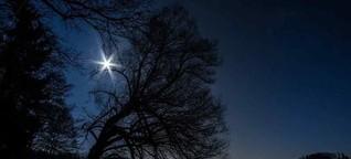 Der Stern über dem Wald - Stefan Zweig