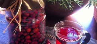 What are the benefits of rosehip? If you drink two cups of rosehip tea a day ...
