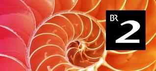 Plastische Chirurgie - Was bringt der 3D-Ganzkörperscanner?