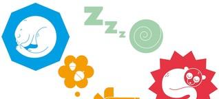Winterschlaf: Augen zu bis nach der Pandemie