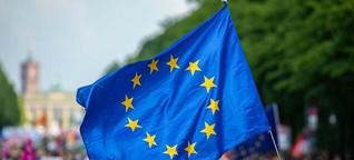 Was die kleinen Parteien in Brüssel erreichen wollen