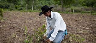 ¿Un desarrollo sostenible para los campesinos de Santa Cruz? | DW | 04.10.2019