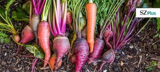 Fünf Mythen der gesunden Ernährung