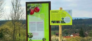 Heimattage Radolfzell: Naturerlebnispfad Möggingen