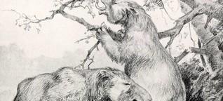 Bis zu vier Meter groß: Die sanften Riesen der Urzeit