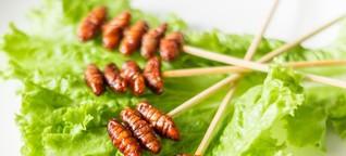 Nicht nur Würmer kommen bald auf den Tisch