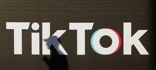 Propagandavideos für Jugendliche: TikTok und die AfD - DER SPIEGEL - Politik
