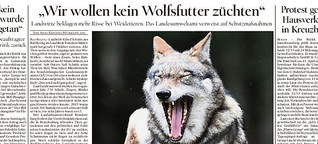 """""""Wir wollen kein Wolfsfutter züchten"""""""