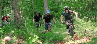 Beispiel Wienerwald : Gute Trails als aktiver Umweltschutz