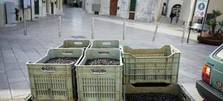 Lebensmittelbetrug: Wenn nicht drin ist, was drauf steht
